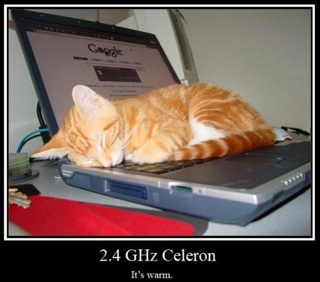 24ghz_celeron